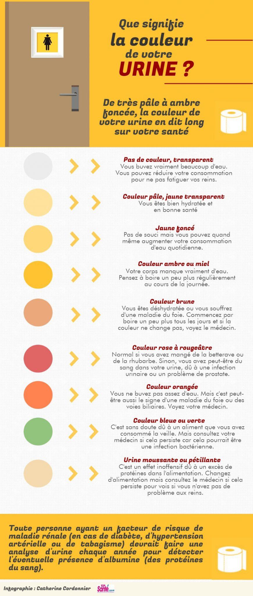 infographie pipi