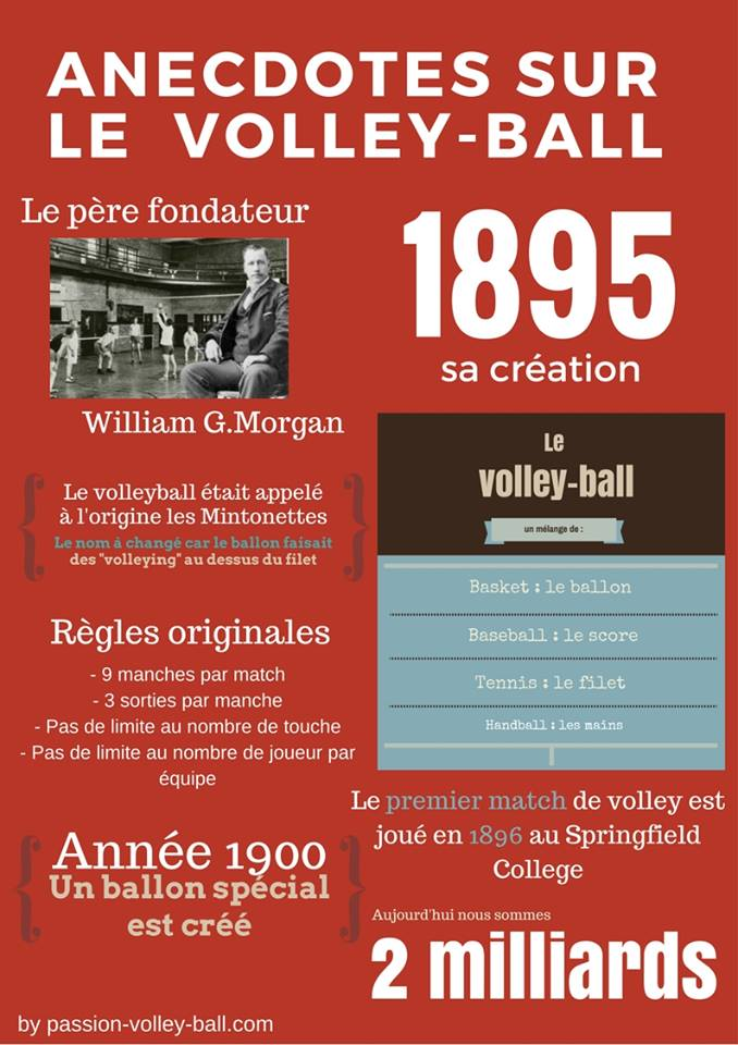 infographie volleyball